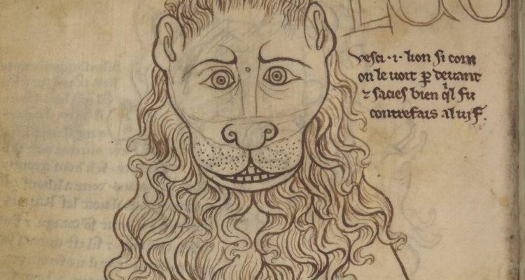 Orsi, leoni e Gruffalo': un taccuino da sfogliare